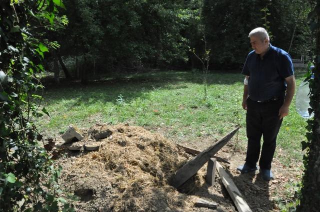 Mezar kazılınca fotokapan kuruldu, çakallar görüntülendi