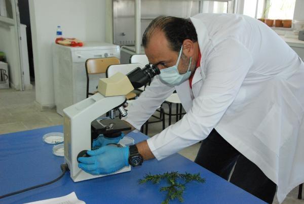 Bartınlı Bilim İnsanlarından Kansere Çare