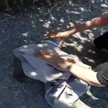 Bartın'da Kafası plastik kaba sıkışan kediyi vatandaşlar kurtardı
