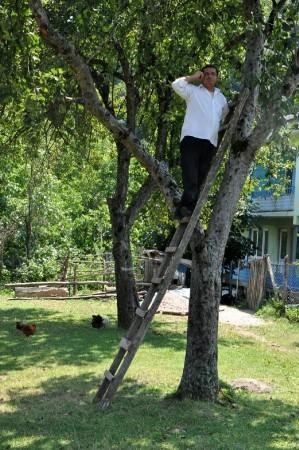 Konuşmak İçin Ağaca Çıkıyorlar
