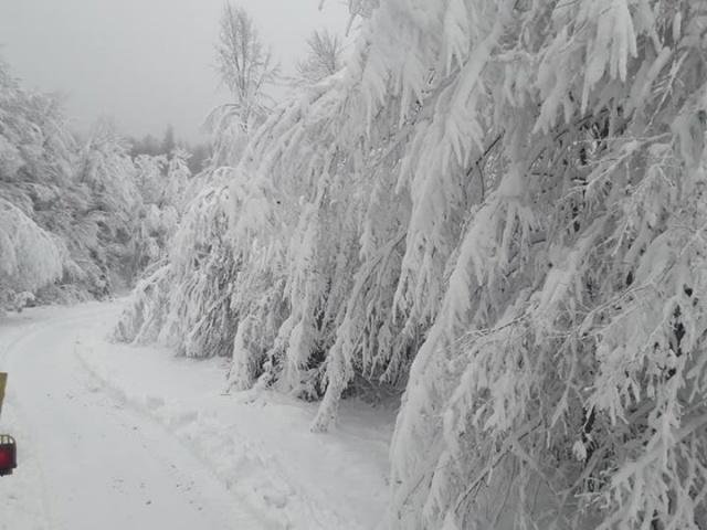 Bartın'da Kar köy yollarını kapattı