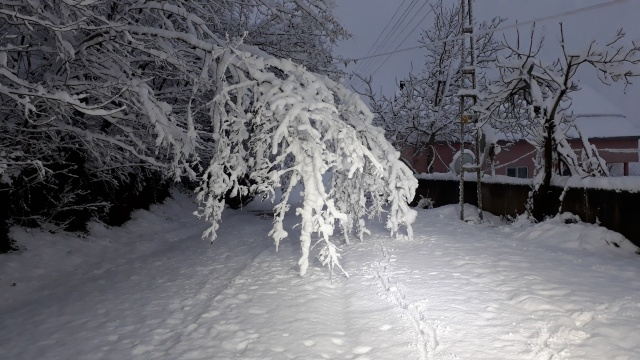 Bartın'dan Kartpostallık Kar Manzaraları