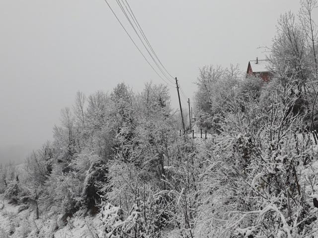 Bartın'da Kar Yağışı Başladı