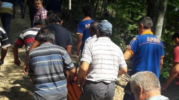 Bartın'da Mantar toplarken devrilen ağacın altında kalarak öldü