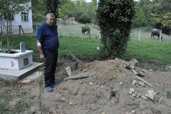 Bartın'da Ayının açtığı mezara fotokapan kuruldu