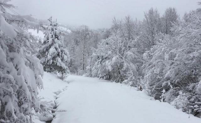 Bartın'da kardan kapanan 600 km köy yolu açılıyor