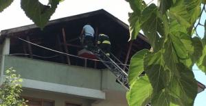 Kozcağız'da Yangın Güçlükle Sönüdürüldü