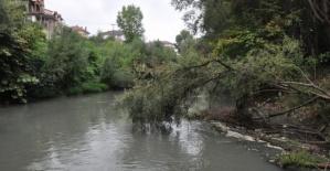 Bartın Irmağının suyu siyaha büründü, balık ölümleri başladı