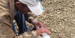 Aracın çarptığı köpek emekli madencinin çabalarına rağmen öldü