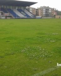 Atatürk Stadı Çiçek Açtı