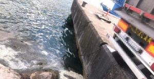 Bartın'da denize atık boşaltan kamyona suçüstü