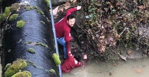 Bartın'da köprüden atlayan genç kız böyle kurtarıldı