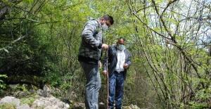 Bartın'da defineciler kaya mezarı talan etti