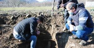 Bartın'da ağaç dikmek için kazılan kuyudan tarih fışkırdı