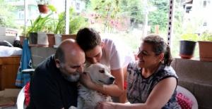 Kayıp köpeklerine Bartın'da kavuşan ailenin mutluluğu