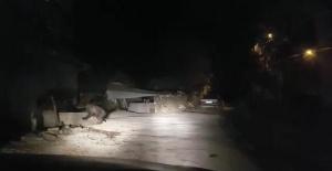 Bartın'da köye inen yavru ayılar, korkuttu