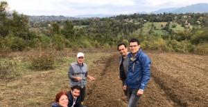 Bartın'da 3 Köyde Salep Projesi Çalışmaları Devam Ediyor
