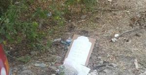 Bartın'da ölen kuş için ilginç mezar başlığı