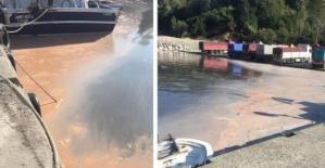 Amasra'da denize kamyonla atık boşaltırken yakalandı
