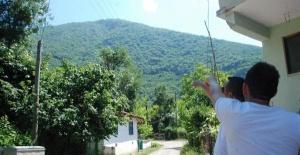 Bartın'da Dağdan Düşen Kaya Köylüleri Korkuttu