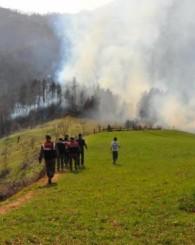 Kurucaşile'de Orman Yangını