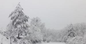 Kış Bartın'a Geri Geldi