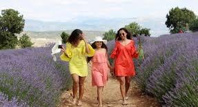 Lavanta Fidelerini Bartınlı Emekçi Kadınlar Toprakla Buluşturdu