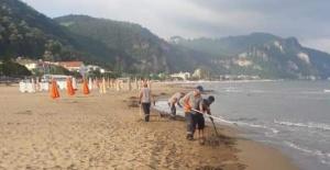 İnkum plajında selin izleri siliniyor