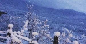 Bartın'da kar iç kesimlerde etkili oldu