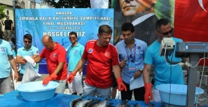 Amasra'da zıpkınla balık avı yarışları nefes kesti