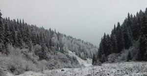 Küre Dağları Beyaza Büründü
