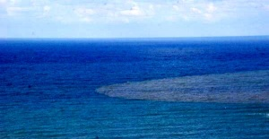Bartın'da çamurlu su, denizin rengini değiştirdi