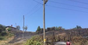Bartın'da Anız yangını kontrol altına alındı