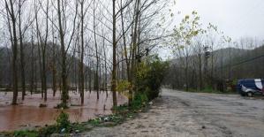 Avara'da Su Taşkınları