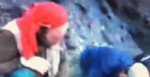 Bartın'da ayıyı vurup parçalayan 6 kişi video çekti