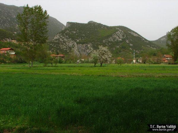 ULUS 2012