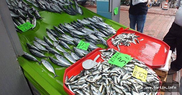 Av Yasağı Bitti, Tezgahlar Balıklarla Şenlendi