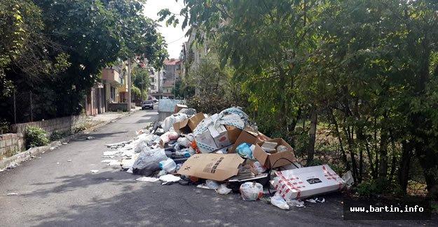 Bartın'da Çöp Dağı Sağlığı Tehdit Ediyor