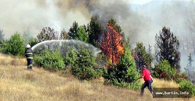 Orman Yangını Son Anda Söndürüldü