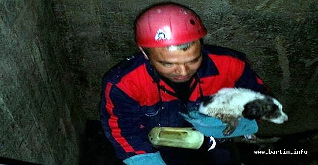 Sulama Kanalına Düşen Köpeği İtfaiye Kurtardı