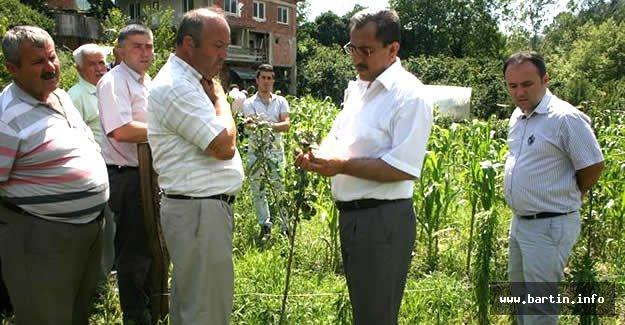 Bitkisel Üretim Yapan Küçük Aile İşletmeleri Desteklenecek