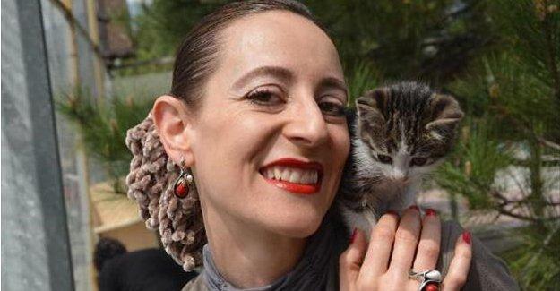 Üniversiteli öğrenciler kedi bakım evi kurdu
