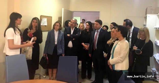 Meclis Araştırma Komisyonu ÇİM'de