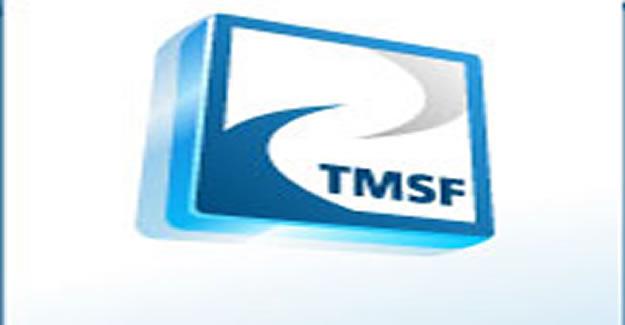 17 şirket TMSF'ye devredildi