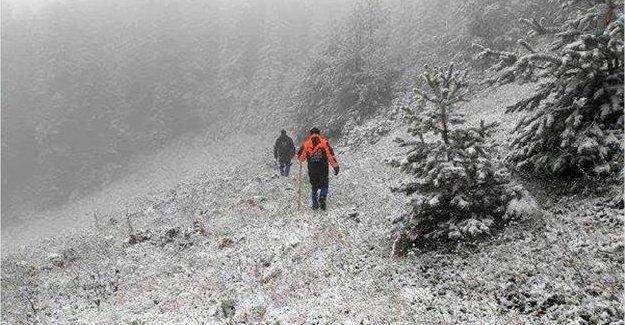 Ormanda kaybolan emekli madenci aranıyor