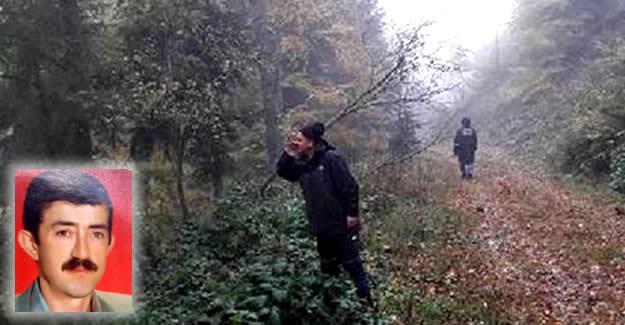 Ormanda mantar toplarken kaybolan emekli aranıyor
