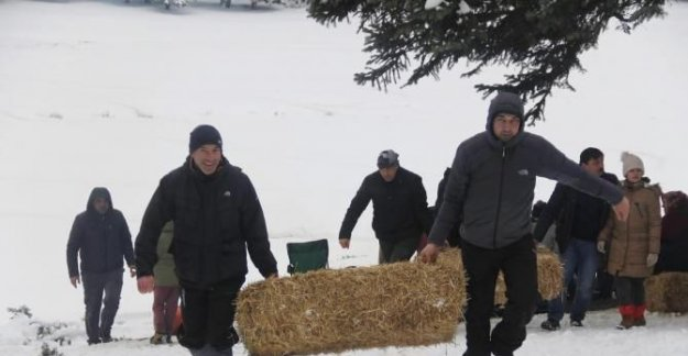 Karlı kaplı ormanlara yaban hayvanları için saman ve ekmek