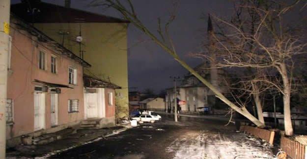 Lodos çatıları uçurdu, ağaçları devirdi