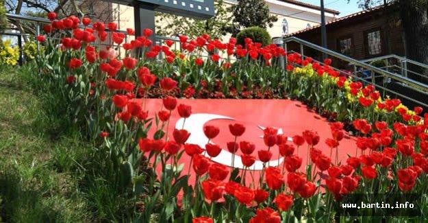Bartın 40 Bin Çiçekle Renkleniyor