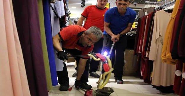 İtfaiyeden mağazada yılan operasyonu